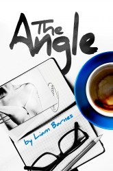 The Angle book cover