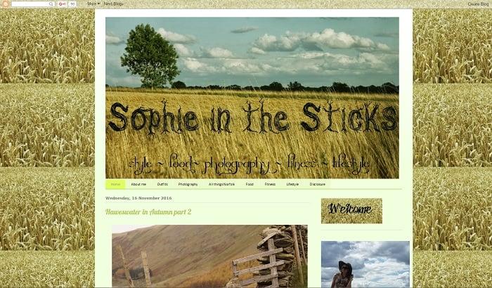top-10-uk-blog-rankings-sophieinthesticks