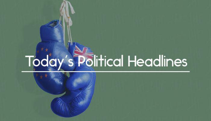 EU UK boxing gloves