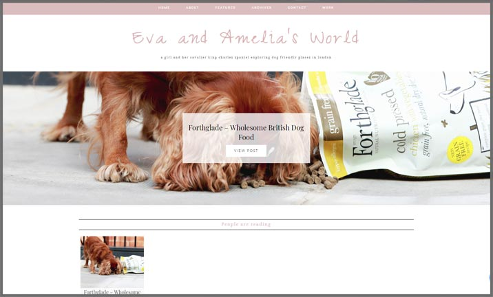 Vuelio Blog Awards 2018 - Pet - Eva and Amelia's World