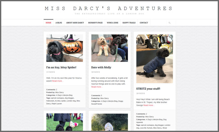 Miss Darcy's Adventures