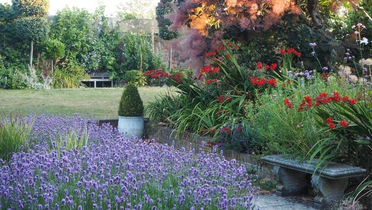 Alexandra Campbell garden 1