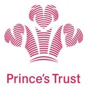Princes Trust Logo Vuelio Client