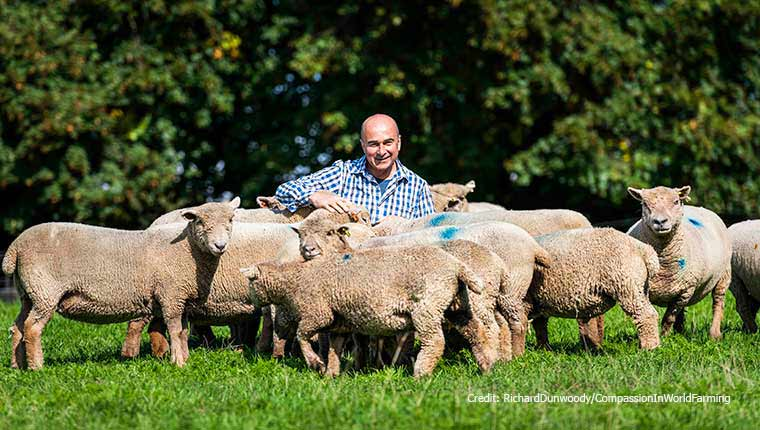 Philip Lymbery and sheep