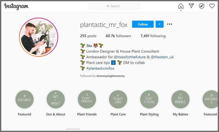 plantastic_mrfox