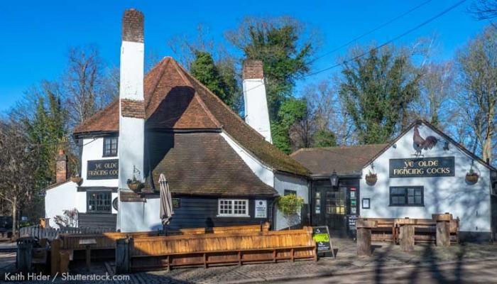 Daisy Cooper pubs